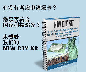 NIW DIY Kit